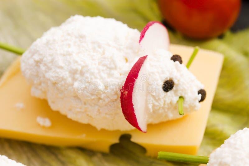 Nourriture d'amusement pour des enfants - souris photos stock