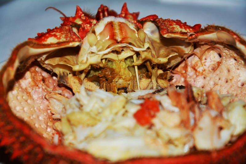 Nourriture d 39 araign e de mer fond de poissons fin photo for Nourriture de poisson