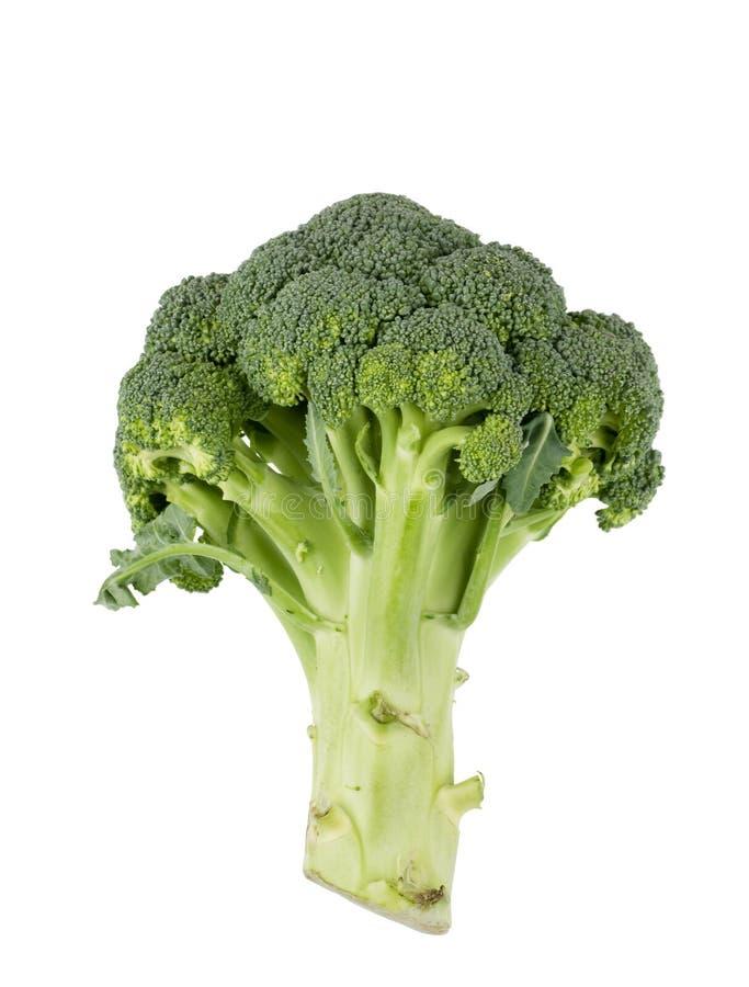 nourriture de broccoli de fond d'isolement au-dessus du blanc cru photographie stock