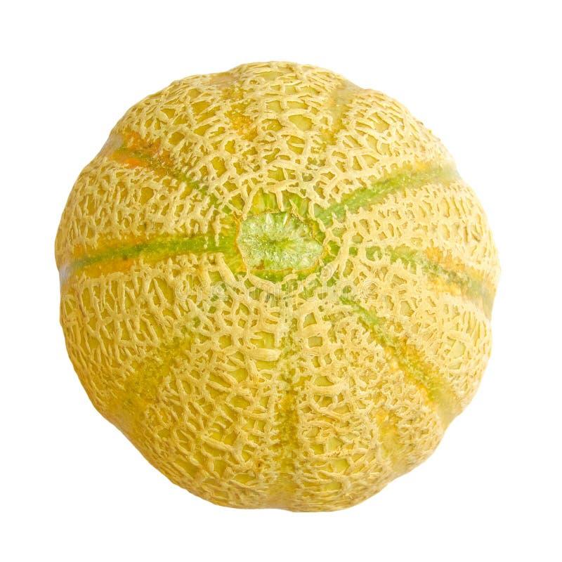 nourriture de fruit de cantaloup photographie stock libre de droits
