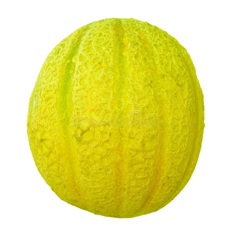 nourriture de fruit de cantaloup images libres de droits