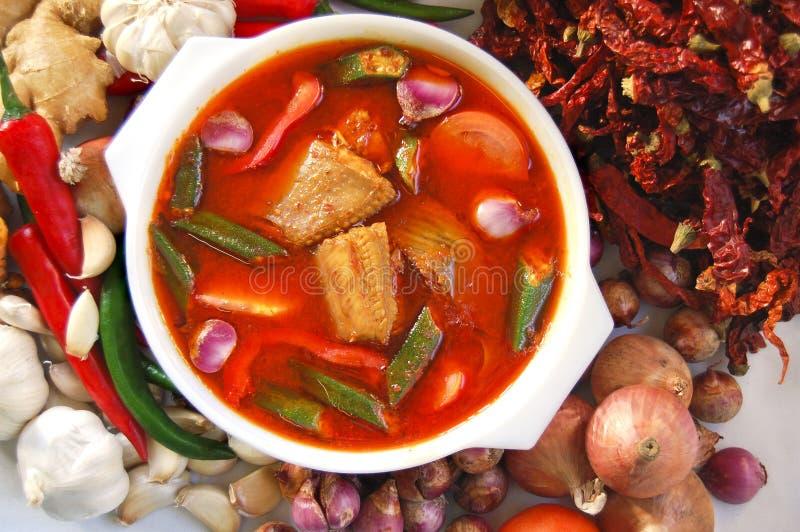 Nourriture de la Malaisie photographie stock