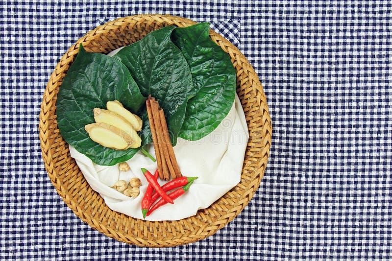 Nourriture de médecine, faisant cuire des ingrédients, des herbes et l'épice photo stock