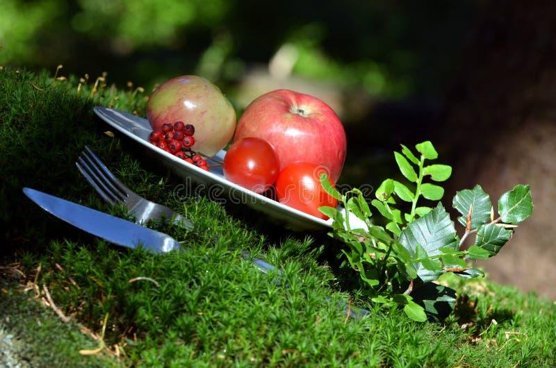 Nourriture de pique-nique de mousse de forêt image libre de droits