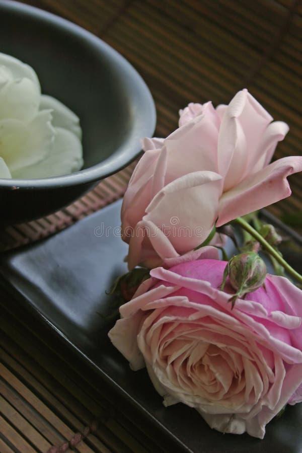 Nourriture de zen pour l'âme images libres de droits