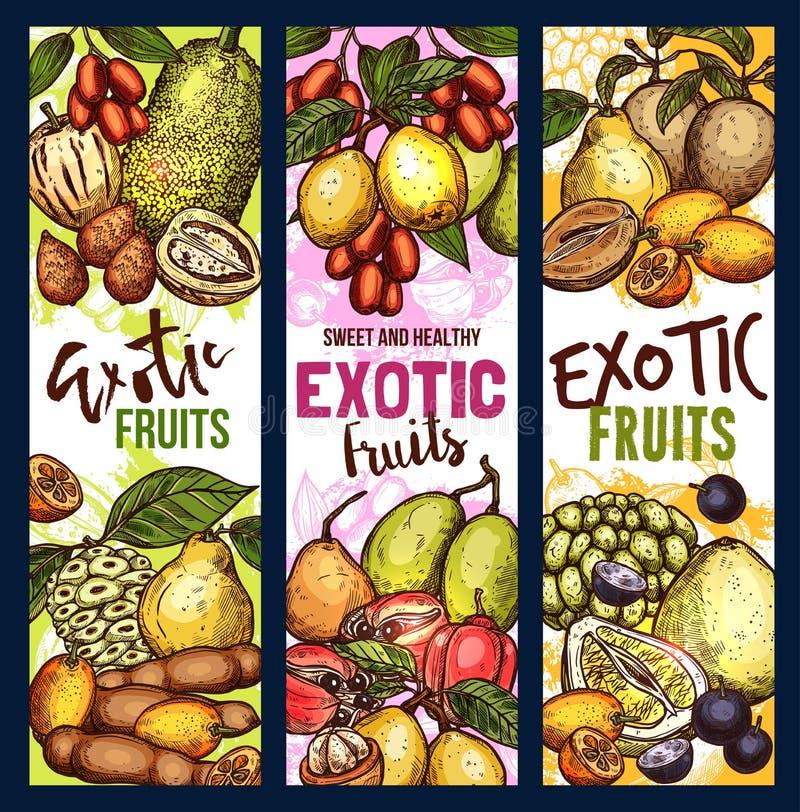 Nourriture exotique de bonbon à fruit et à baie illustration stock