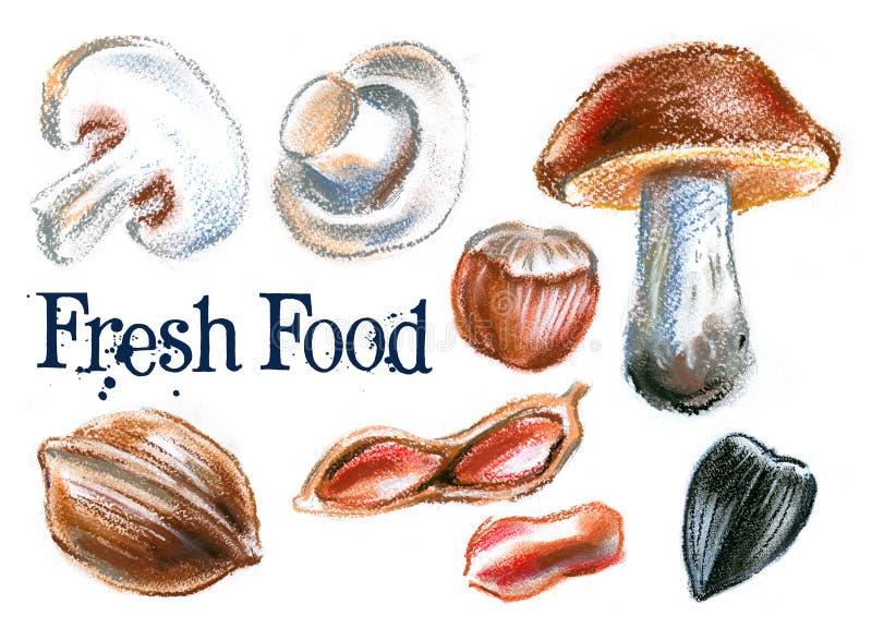 Nourriture fraîche sur un fond blanc illustration de vecteur