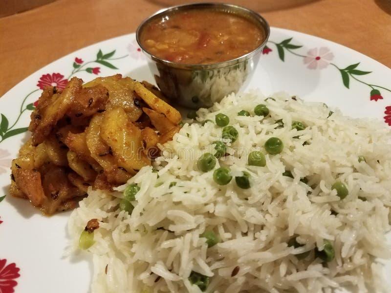 Nourriture indienne de confort photo stock