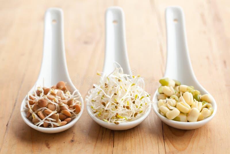 Nourriture macrobiotique photo stock