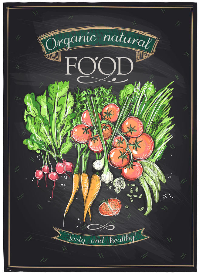 Nourriture naturelle organique de tableau illustration stock