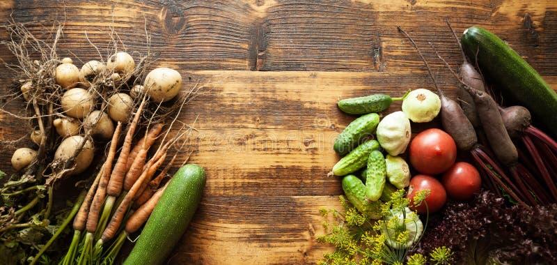 Nourriture organique fraîche de légume cru Ferme naturelle d'agriculture, récolte saine photo stock