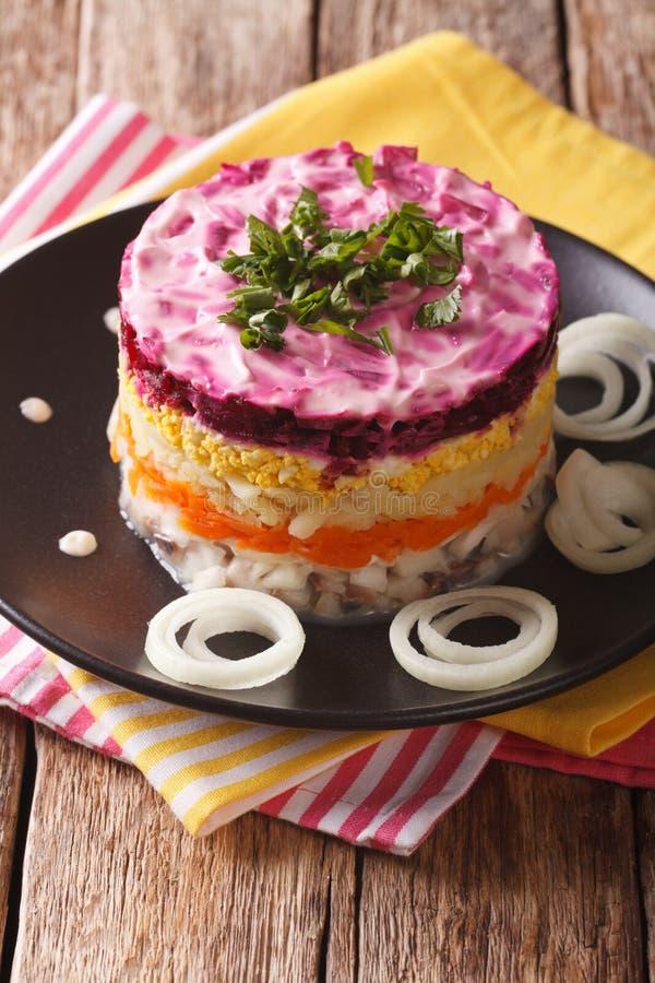 Nourriture russe : Shuba - salade d'harengs avec des légumes en gros plan Le VE photo libre de droits