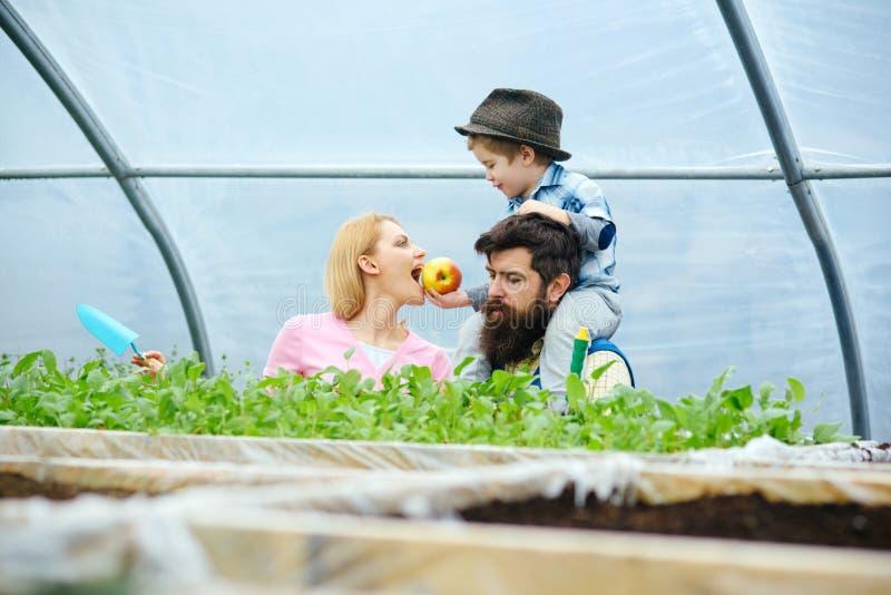 Nourriture saine Concept sain de nourriture famille heureuse cultivant la nourriture saine nourriture saine pour la belle mère co image stock