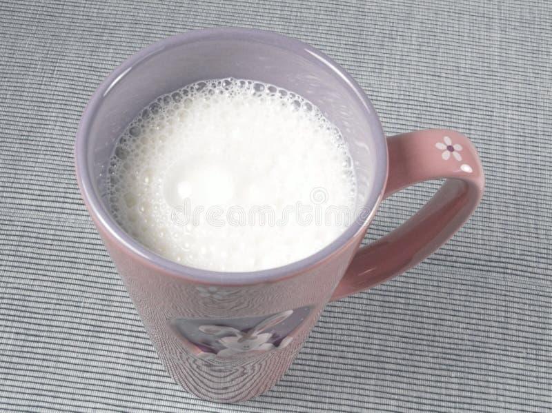 Nourriture saine - cuvette de lait photographie stock libre de droits