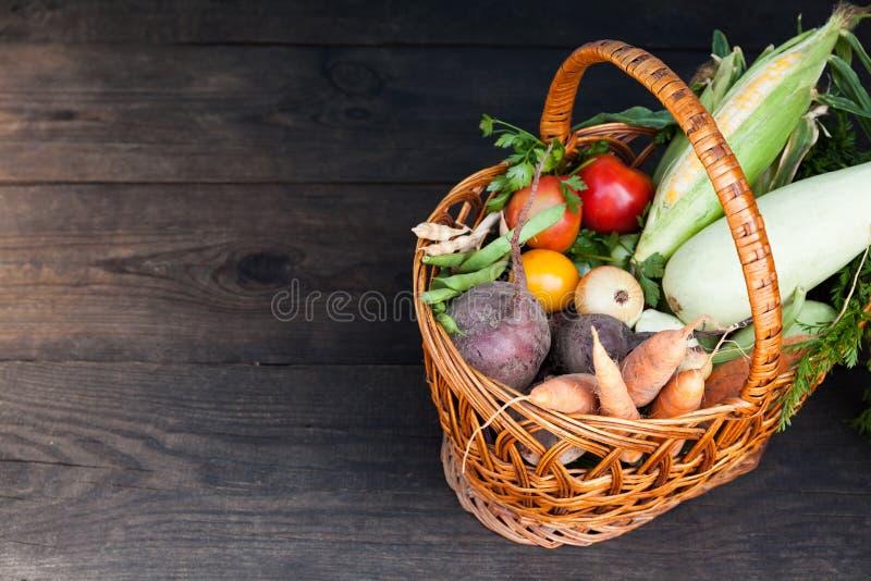 Nourriture saine fraîche, usine de désintoxication Récolte organique de detox images libres de droits