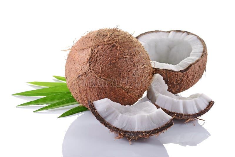 Nourriture saine Noix de coco fraîche avec les palmettes vertes photos stock
