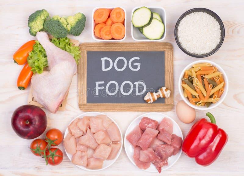 Nourriture saine pour des chiens avec l'espace de copie photographie stock libre de droits