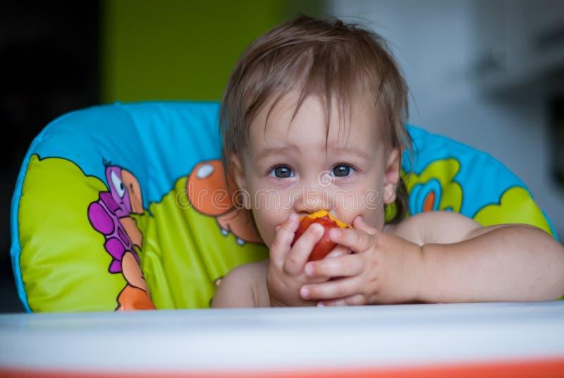 Nourriture saine pour le bébé photo libre de droits
