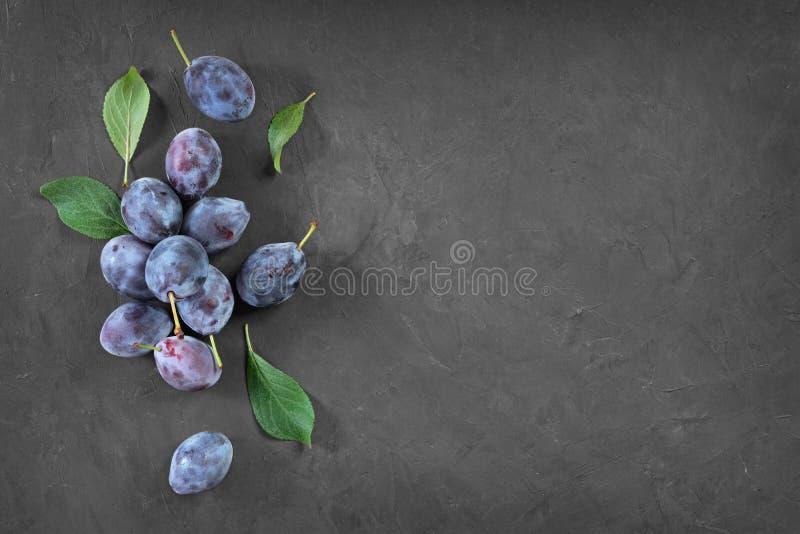 Nourriture saine Prune mûre fraîche et feuilles de vue en gros plan avec l'espace de copie image stock