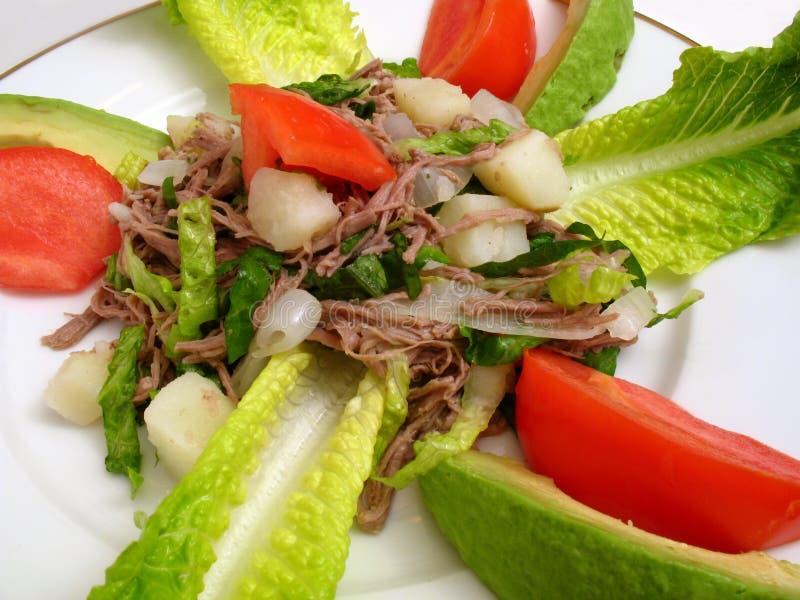 Nourriture Salpicon-Mexicaine photo libre de droits