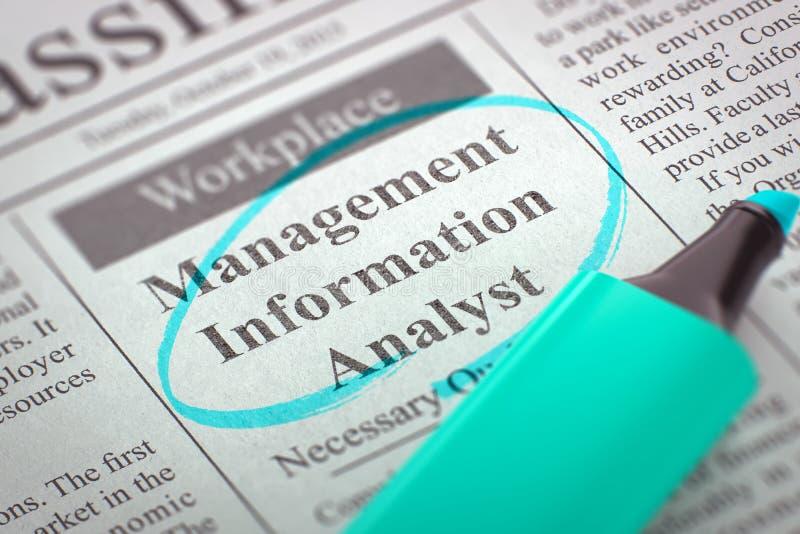 Nous louons l'illustration de l'analyste 3D de l'information de gestion illustration libre de droits