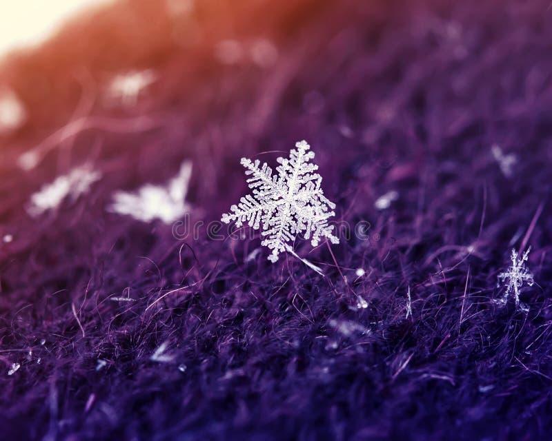 Nouveau flocon de neige iridescent du ` s d'année petit beau sur un knitt chaud photos libres de droits