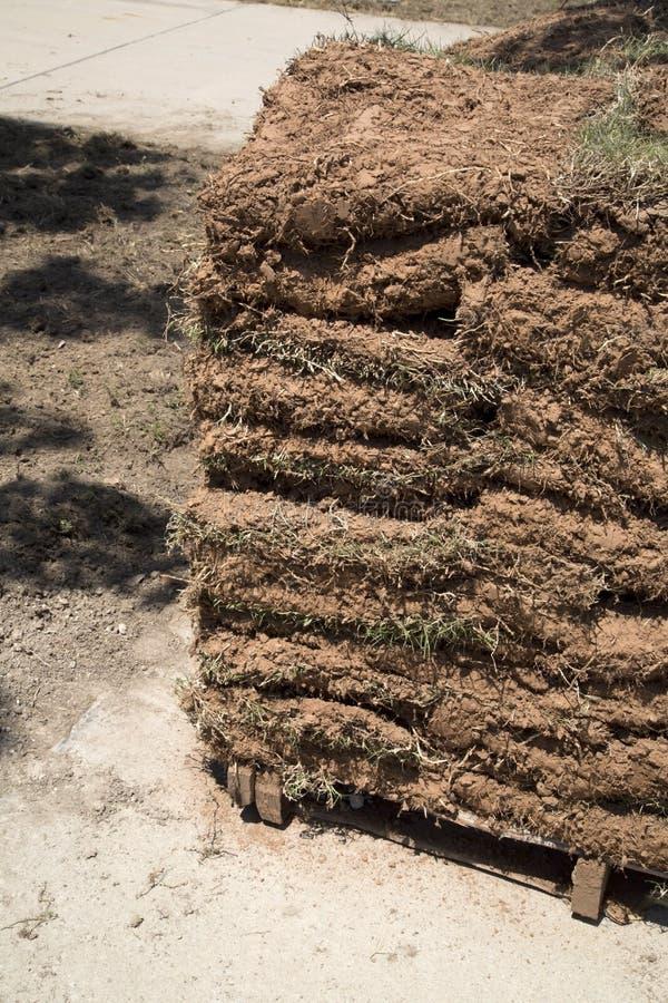 Nouveau gazon de pelouse prêt la nouvelle cour images stock