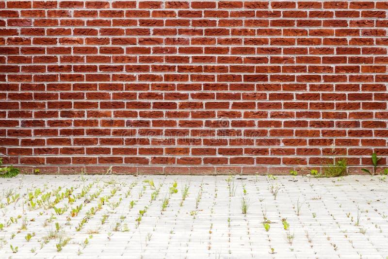Nouveau mur de briques rouge vibrant image stock