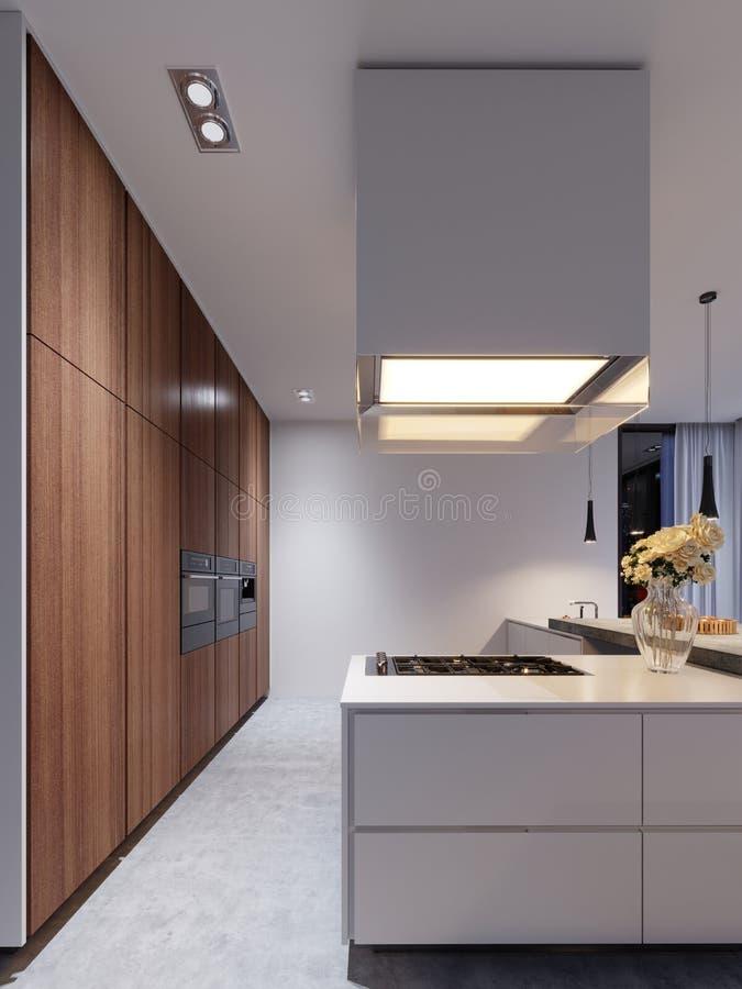 Nouveaux appareils de cuisine dans une cuisine moderne, un capot suspendu et une nouvelle surface à cuire illustration de vecteur