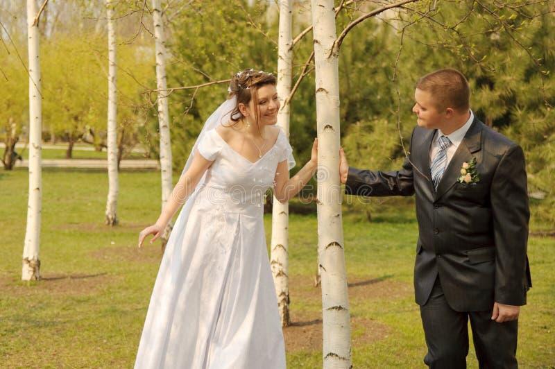Nouveaux mariés photo libre de droits