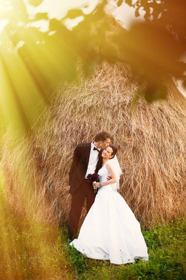Nouveaux mariés dans le jardin images stock