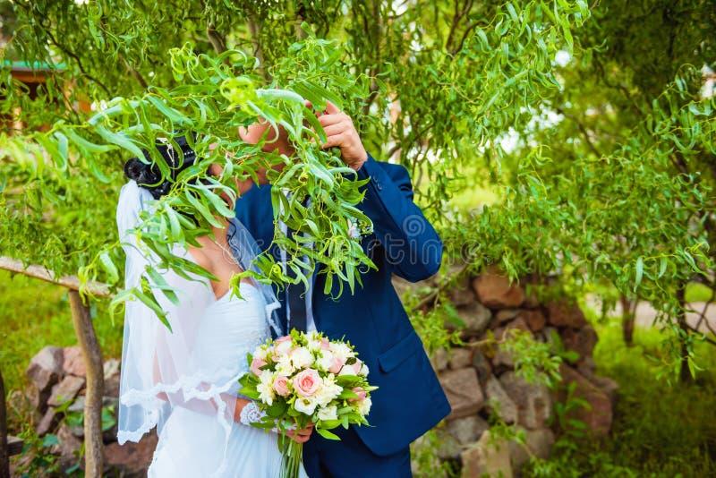 Nouveaux mariés mariés se cachant derrière la branche avec des feuilles photo libre de droits