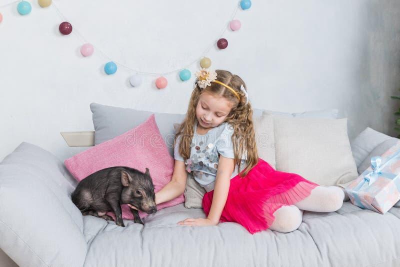 Nouvelle année chinoise 2019 Porc chanceux L'année du porc Fille blonde mignonne avec le porc de bébé célébrant la nouvelle année photographie stock