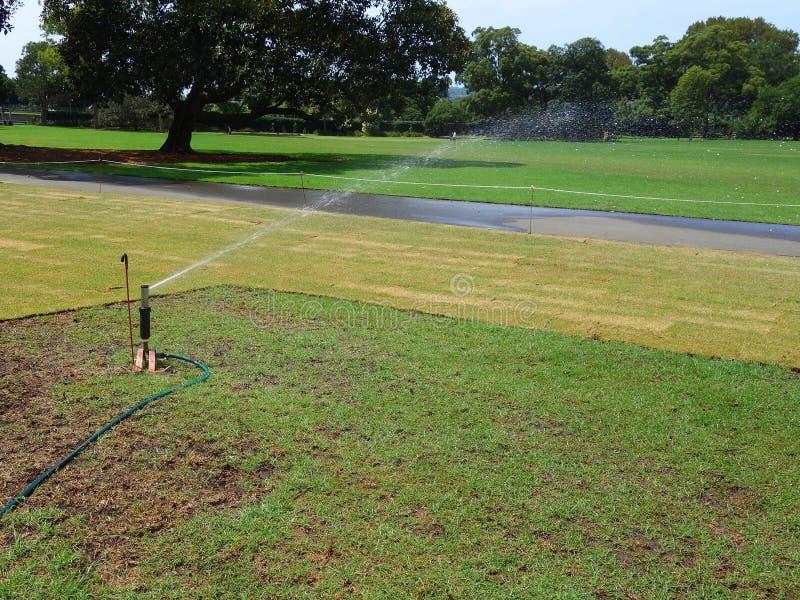 Nouvelle irrigation de gazon images libres de droits