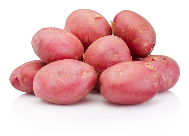 Nouvelle pomme de terre rouge d'isolement sur le fond blanc images stock