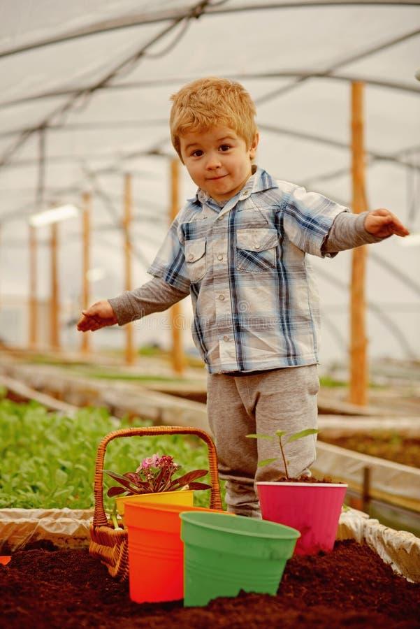 Nouvelle technologie dans l'agriculture innovation en nouvelle technologie dans l'agriculture petit garçon cultivant avec la nouv images stock
