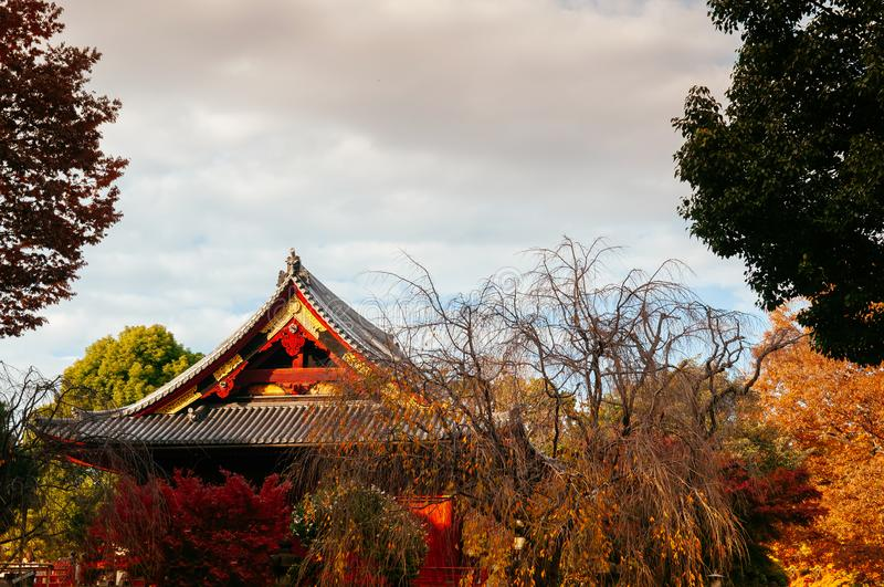 Old red wooden building of Kiyomizu Kannon-do shrine in Ueno park, Tokyo in autumn stock photography