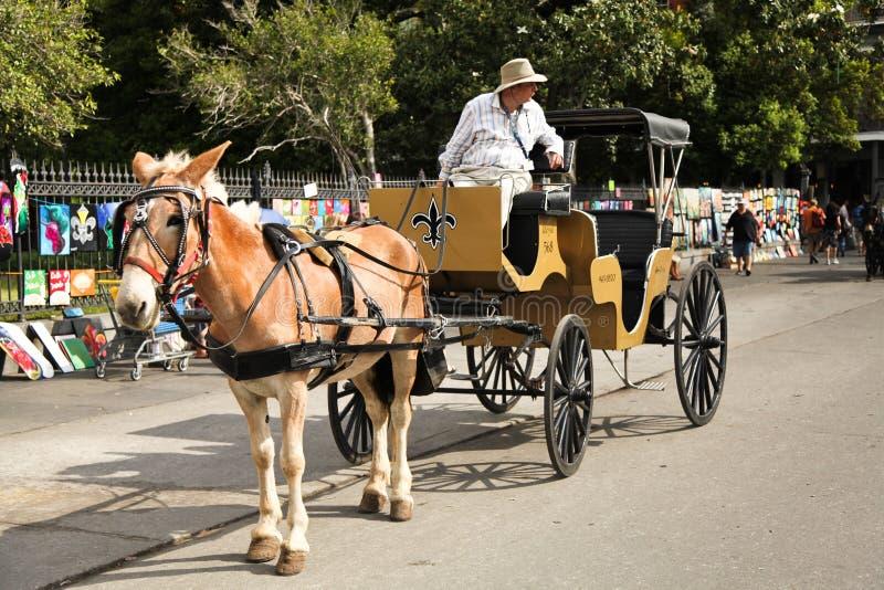 Nova Orleães - mula e carro fotos de stock royalty free