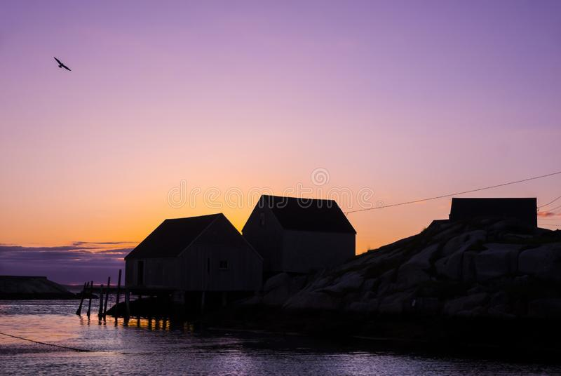 Nova Scotia-Fischen verschüttet bei Sonnenuntergang mit Fliegenseemöwe lizenzfreie stockbilder