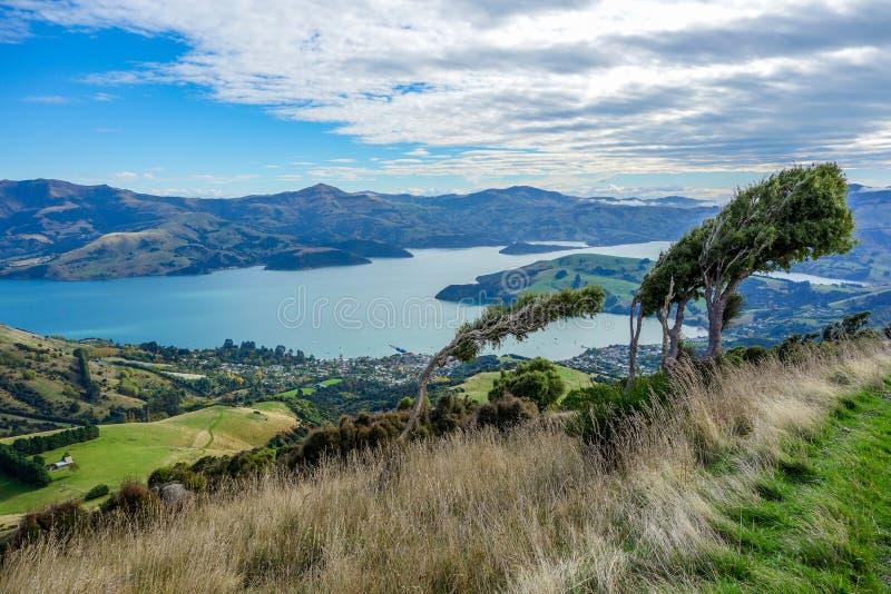 Nova Zelândia 64 foto de stock