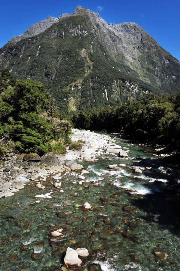 Nova Zelândia Fiordland imagens de stock royalty free