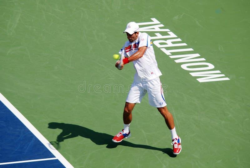 Novack Djokovic image stock