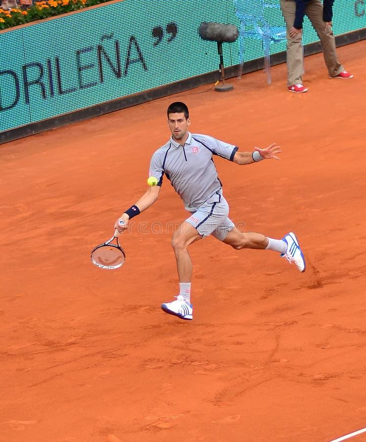 Novak Djokovic imagem de stock