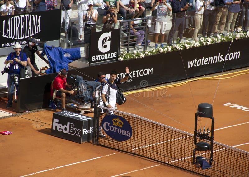 Novak Djokovic fotos de archivo libres de regalías