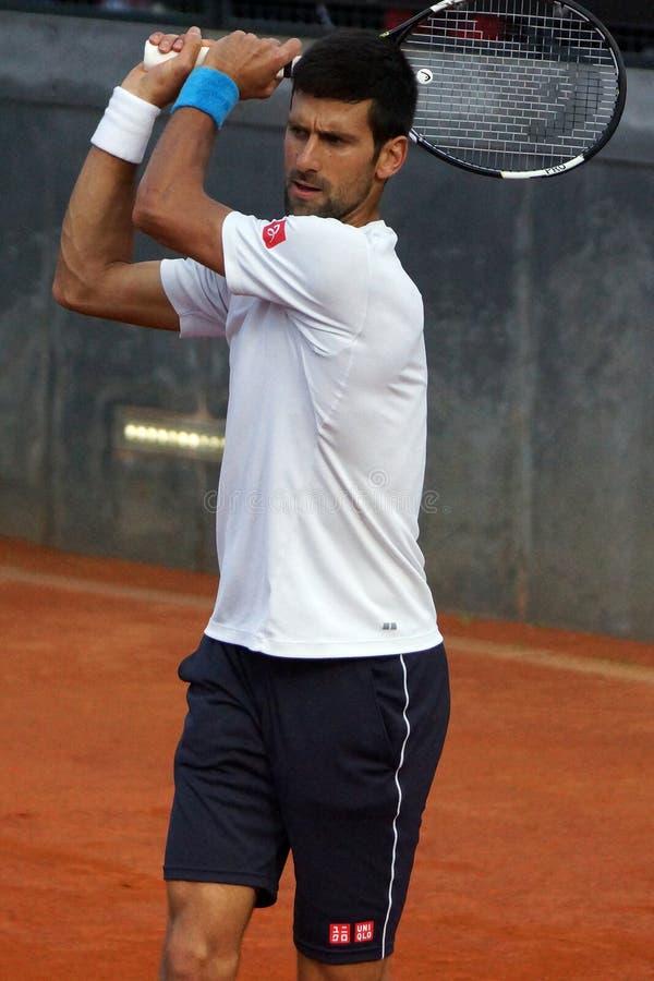 Novak Djokovic (BSR) image stock