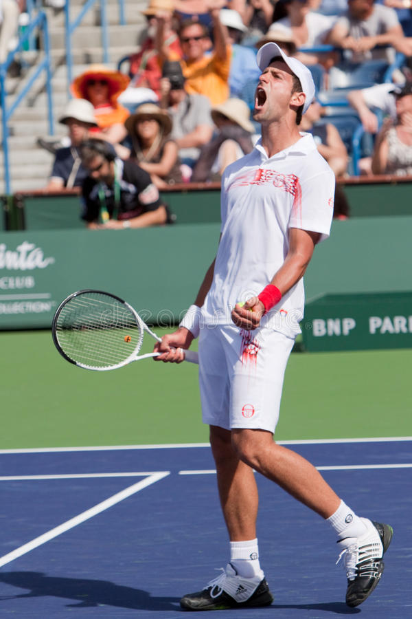 Novak Djokovic en el BNP 2010 Paribas abierto imagenes de archivo