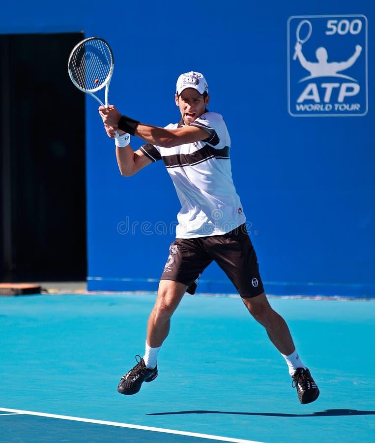 Novak Djokovic, jugador de tenis profesional foto de archivo libre de regalías