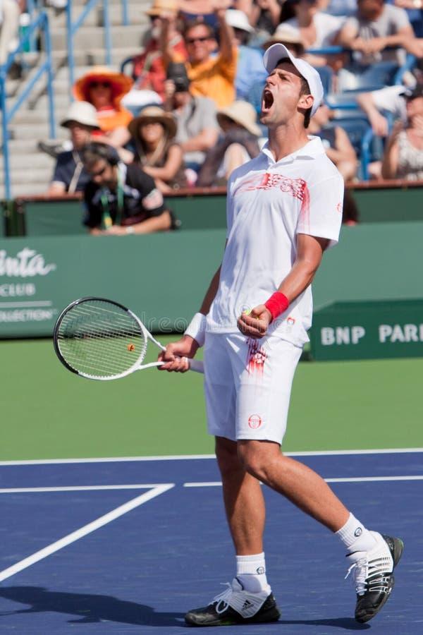 Novak Djokovic no BNP 2010 Paribas aberto imagens de stock