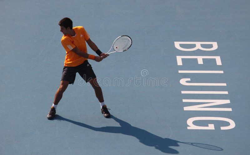Novak Djokovic (SRB), jogador de ténis profissional fotografia de stock royalty free