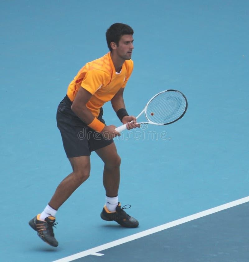 Novak Djokovic (SRB), jugador de tenis profesional fotografía de archivo libre de regalías
